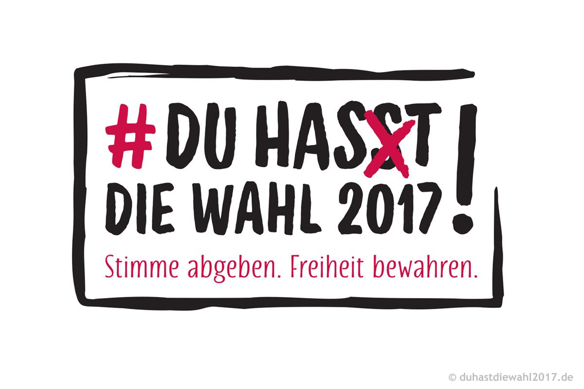 Logo zur Kampagne #duhastdiewahl2017